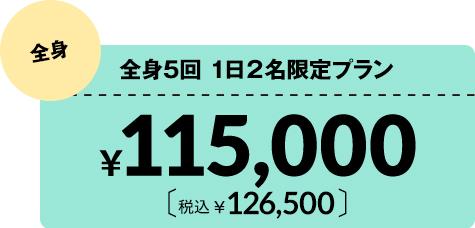医療脱毛全身5回1日2名限定プラン¥115,000 税込¥126,500