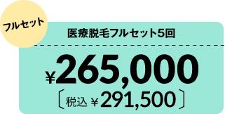 医療脱毛フルセット5回¥265,000 税込¥291,500